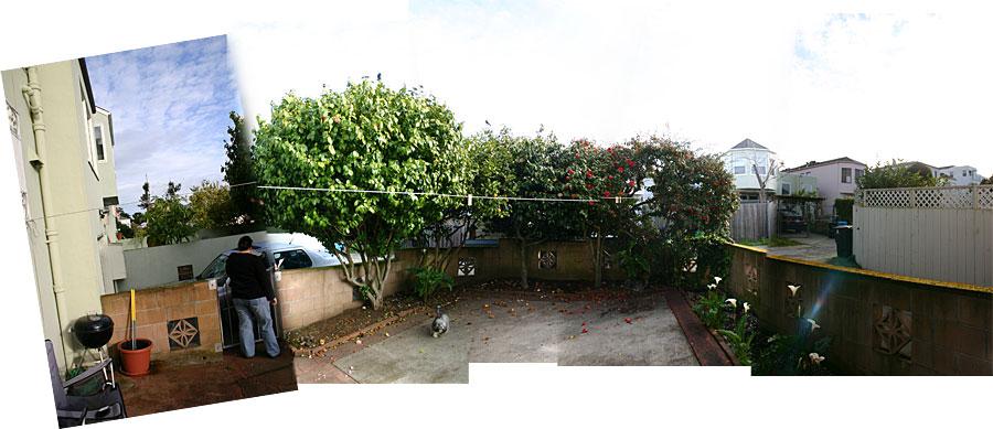 garden13mar06.jpg